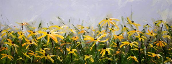 Rudbeckia Daisies by Andrew Snee