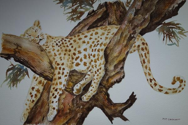 Sleeping Leopard by Trish Garratt