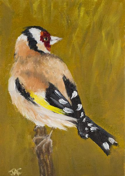 Goldfinch 1 by John Crabb