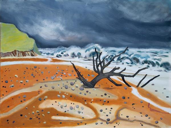 Storm beach by Michael Parkinson