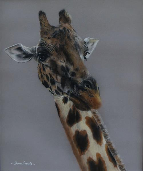 'Curious' by Sharon  Francis