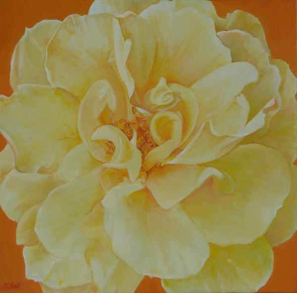 Yellow Rose by Jackie Whall