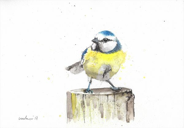 Blue Tit on a stump - watercolour and ink A4 on paper