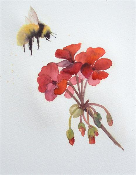 Bumble Bee & Red Geranium