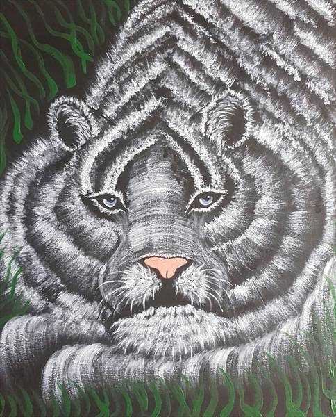 meow . white tiger by angela whitehouse