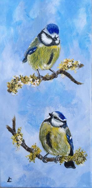 Birds in Spring (2) by Jude Cottrell