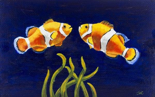 Clown Fish Fun by John Crabb