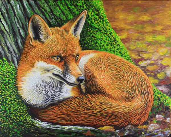 Wyre Forest Fox Autumn Wildlife by Simon Knott