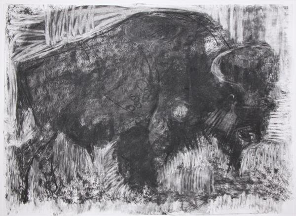 Buffalo by Liane Stevenson