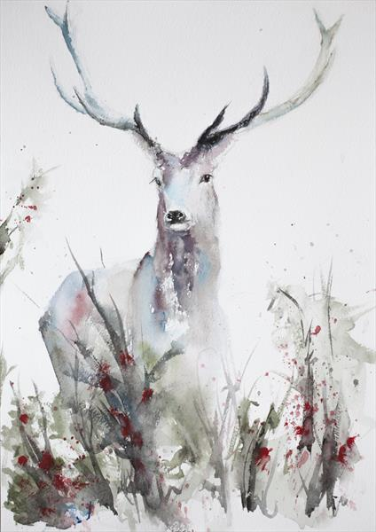 Deer at the meadow by Tomasz Mikutel