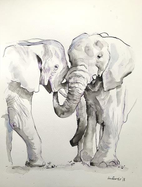 'Stronger together #02' - Elephant Ink & watercolour Drawing
