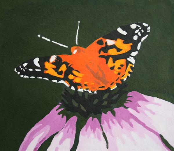 Painted Lady by Jess Fuller