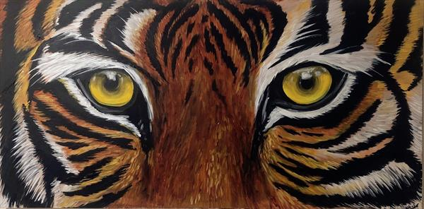 Tiger Eyes by Aisha Haider
