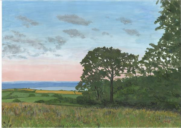 Field off Harwell Lane, South Brent by John Van Der Kiste
