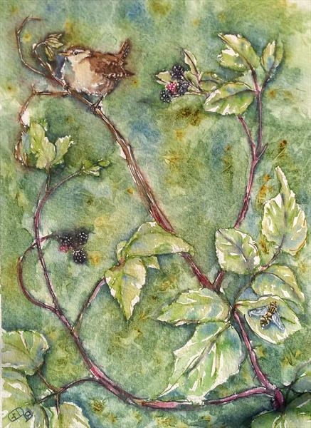 Wren on bramble by Gillian O'Neil