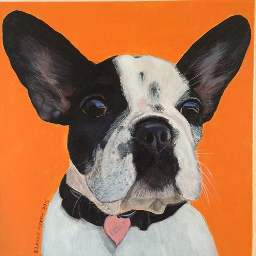 Dolly - French Bull Dog by ELAINE ASKEW