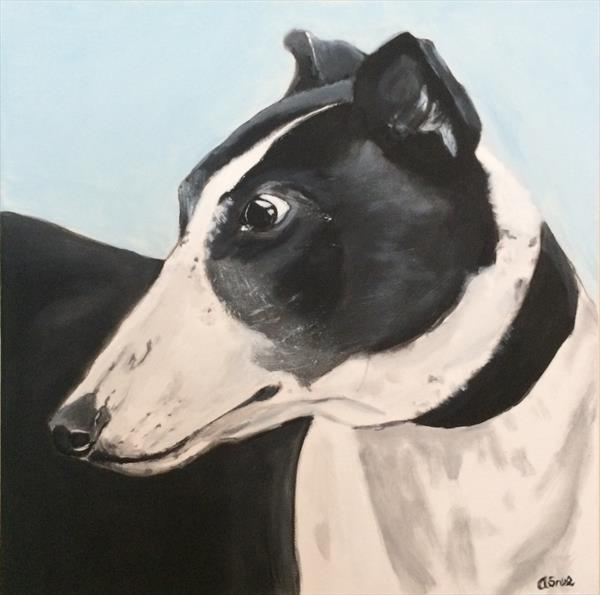 Buster the greyhound by Andrew Snee