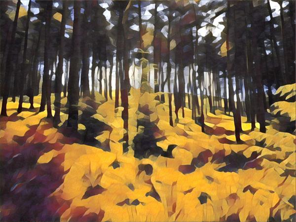 Yellow Forest by Stephanie Clarkson