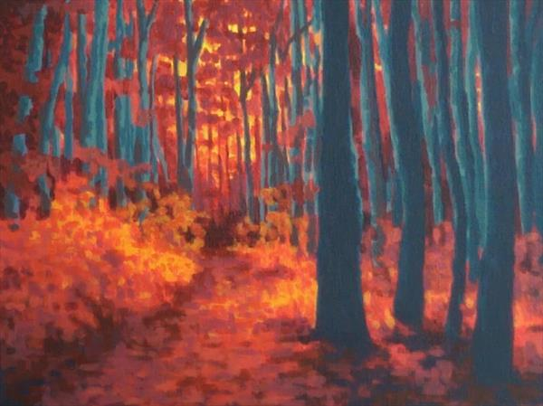 Sunset Woods by Graeme Robb