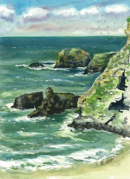 Bassets Cove near Portreath Cornwall by Phil Willetts