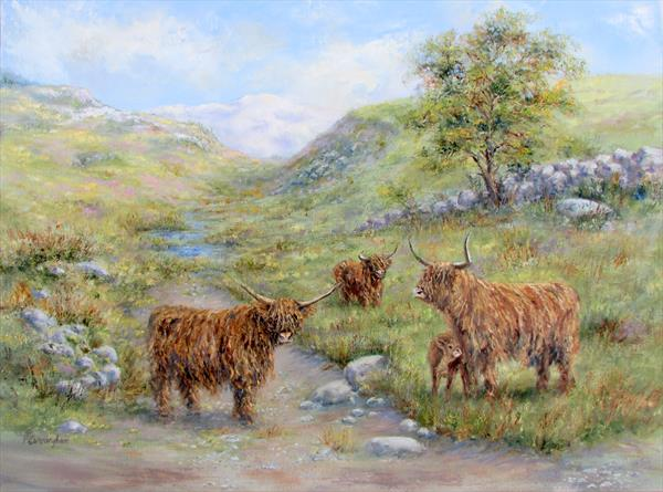 Highland Cattle by Patricia Cunningham