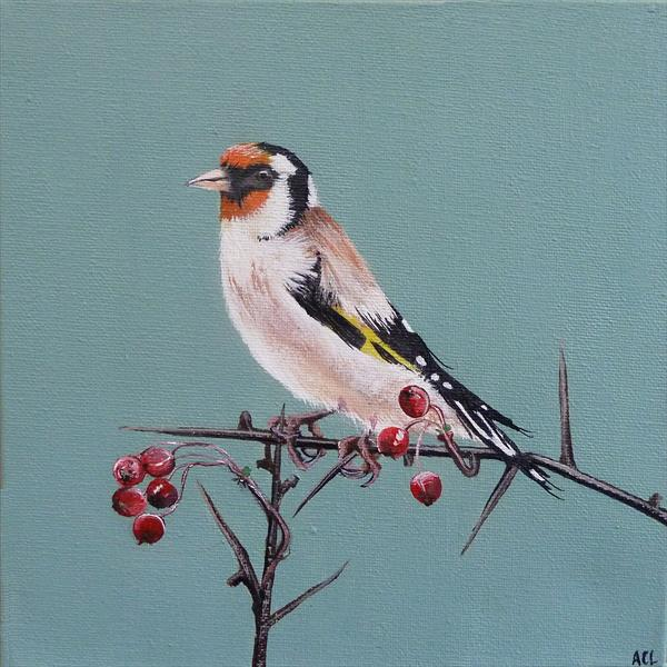 Christmas Goldfinch