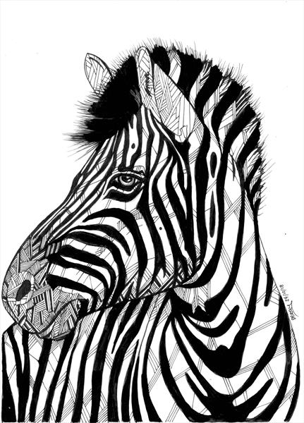 This is Not A Zebra by Spencer   Derry