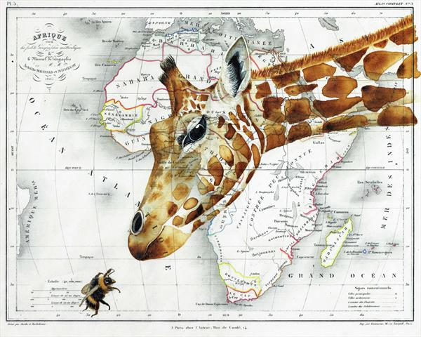 Giraffe and Bee on Map of Africa Limited Edition Print by jane Wilson
