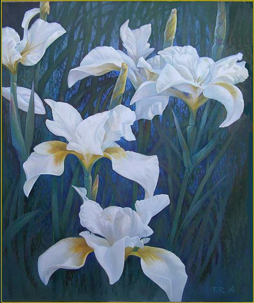 White Irises by Tatiana Rezvaya
