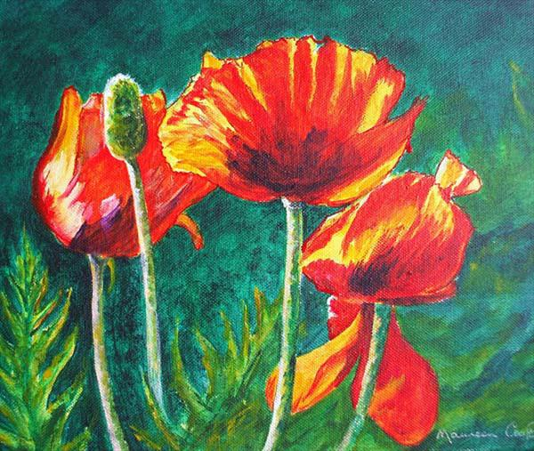 Poppies by Maureen Crofts