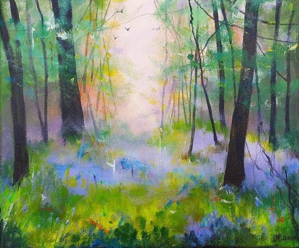 Mist through  Bluebell Glade by Teresa Tanner