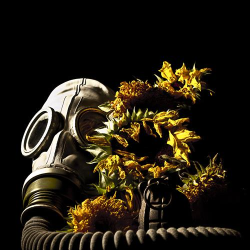 Gas Mask and Flowers by Andrew Ward