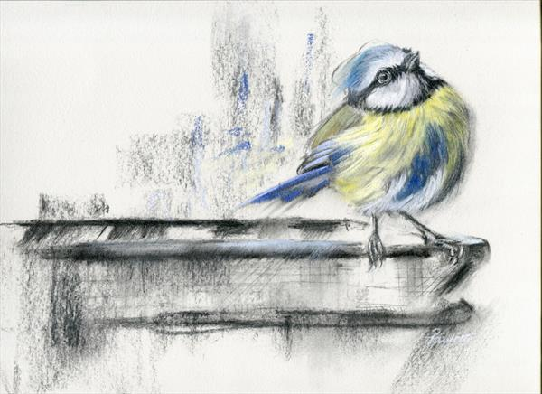 Bird Art - Just Thinking by Paulette Farrell