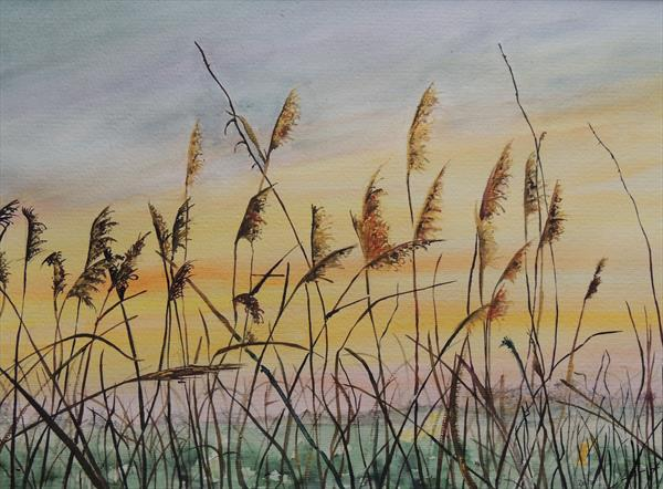Sunrise in the Fens by Elizabeth Sadler