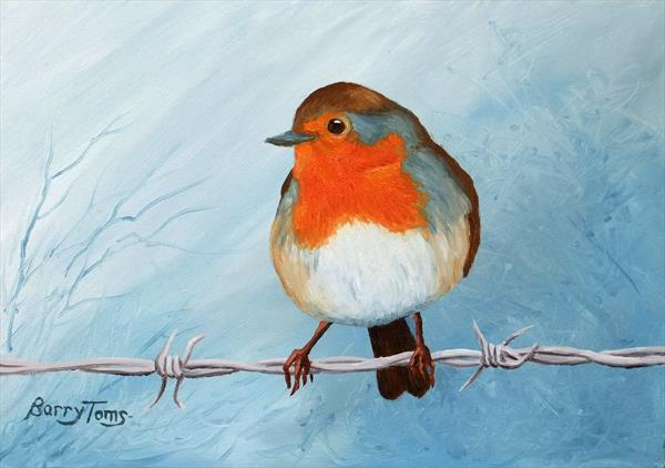 Robin on Barbed Wire by Barry Toms