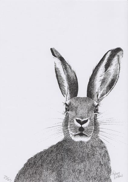 Hare by Kelsey Emblow