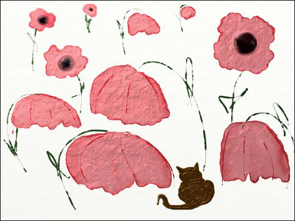 Cat in poppies by Ann Mcphillips