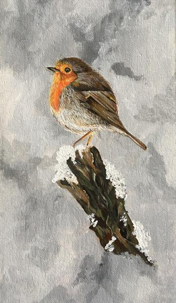 Friendly Robin by Jude Cottrell