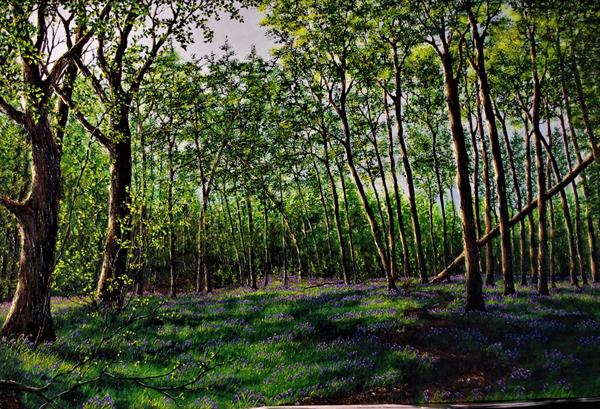 Spring Time In Burton Forest by Hazel Thomson
