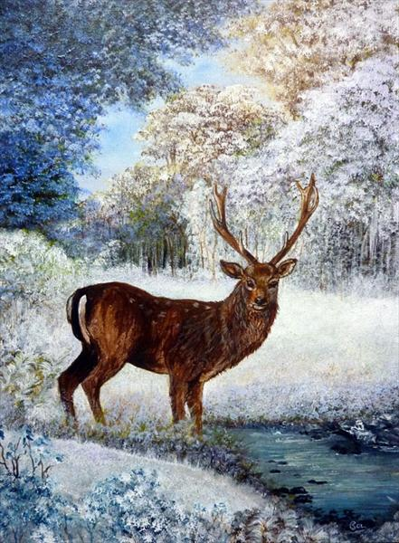 Stag in the Snow by Susan Colclough