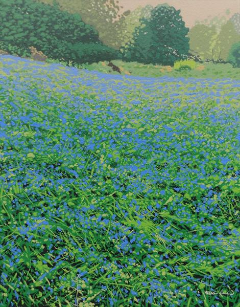 Bluebell Haze by Malcolm Warrilow
