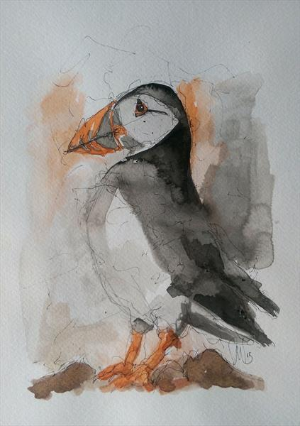 Puffin by Sean Wales
