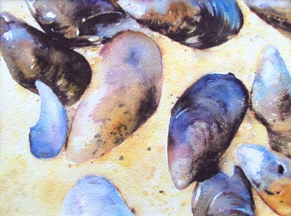 Mussel Shells on Beach