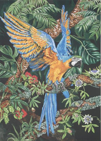 Blue and Yellow Macaw by Zoe Elizabeth Norman