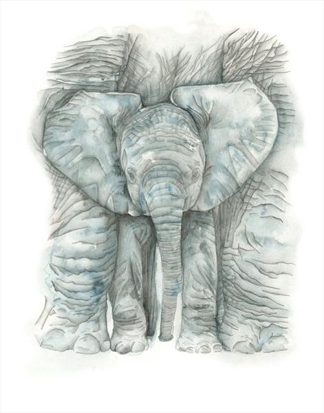 Little Ele - Baby Elephant by Leigh  Townsend