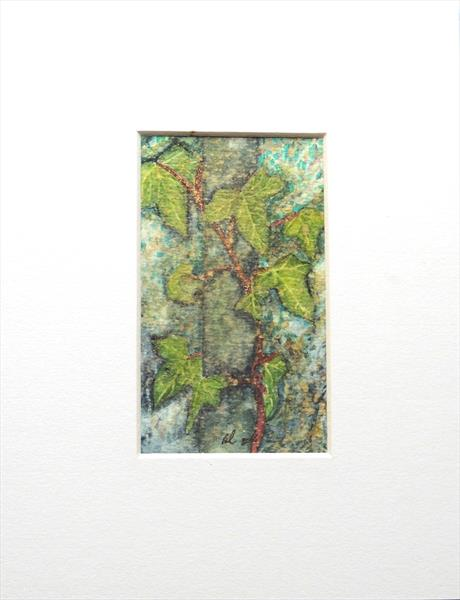 Ivy on Ash tree by Elizabeth Sadler