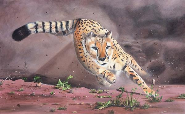 Cheetach. Large canvas by Ira Whittaker
