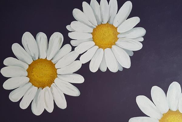 A Daisy Day  by Joanne Vincent