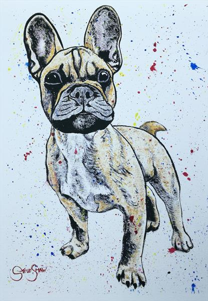 Pup. Watercolour/acrylic on paper by Steven Shaw