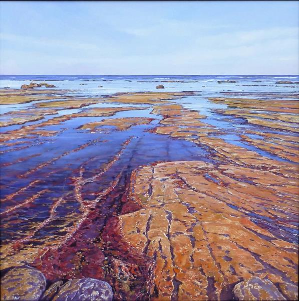 Low Tide by Michael Salt